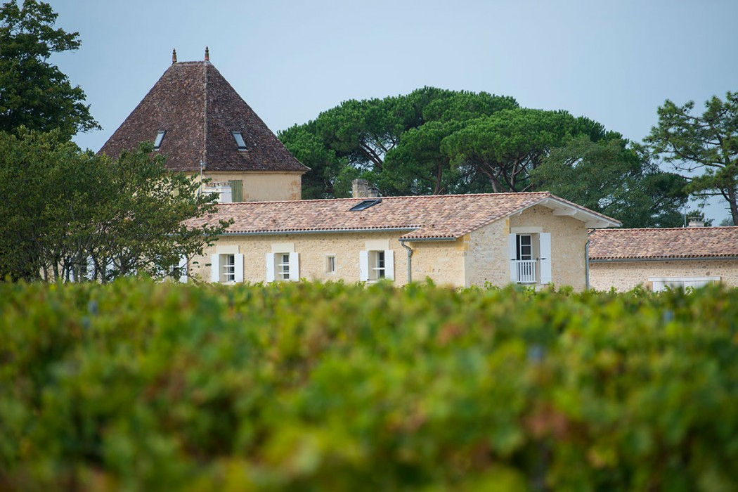 Ogier-de-Gourgue-chateau_et_vignes-1050x700
