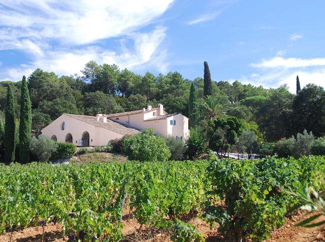 Vignes_Saint_Tropez