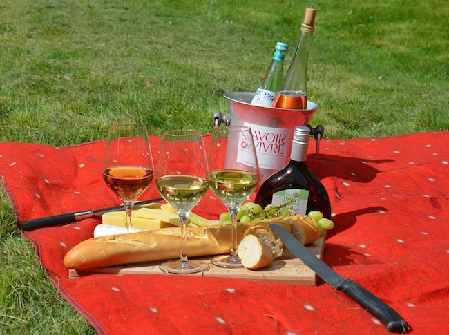 picnic-977866_960_720
