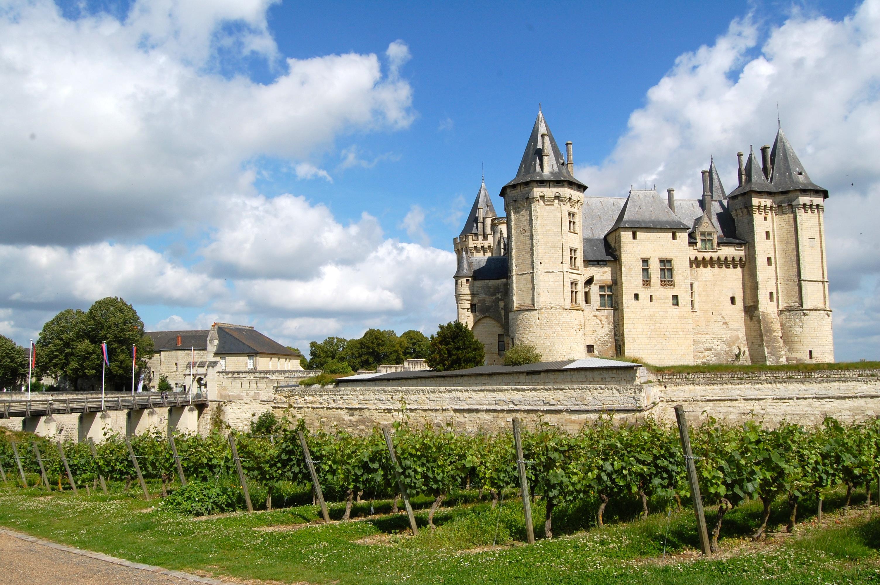Vignes_du_château_de_Chinon