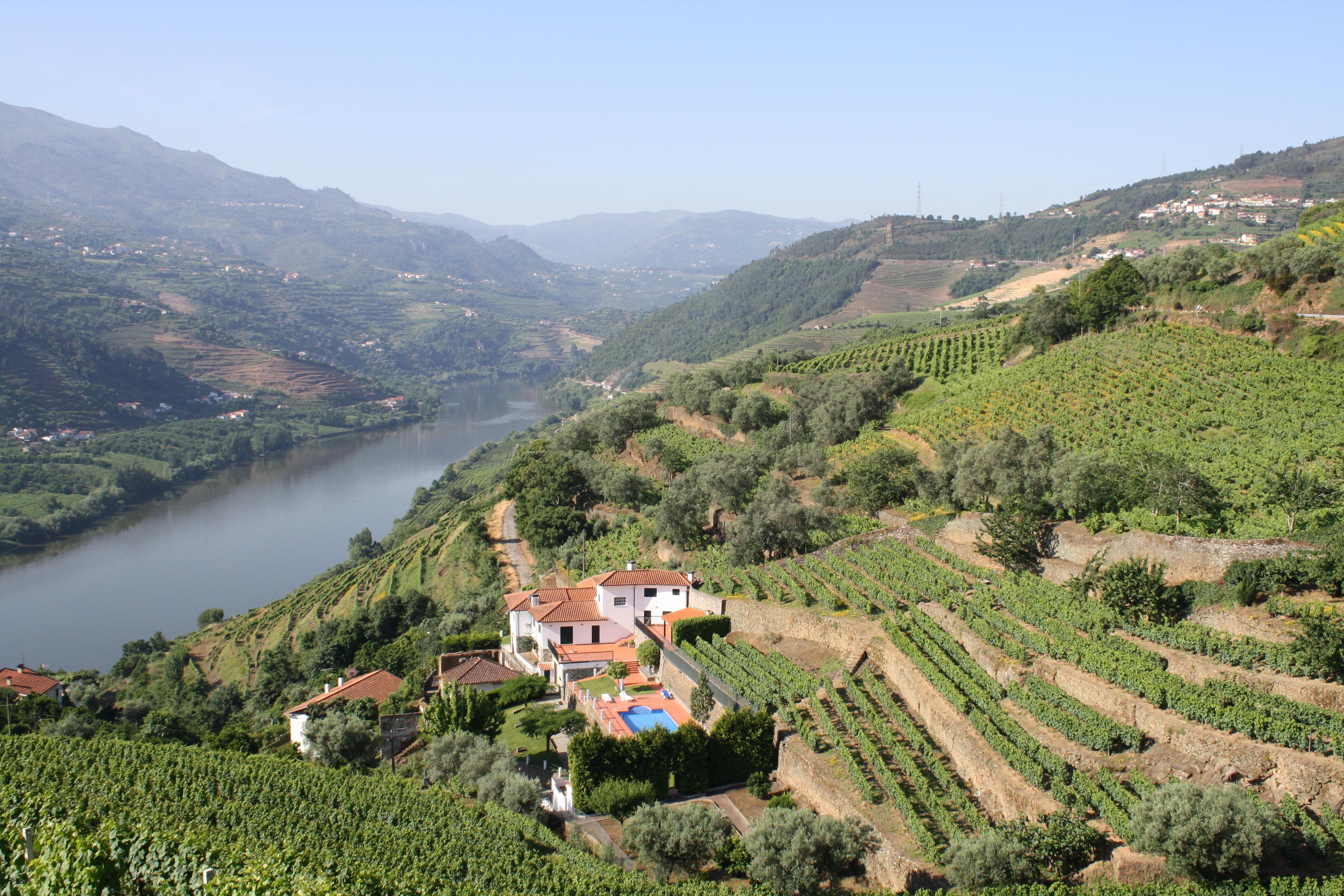Vallée_du_Douro_-_vignoble_de_porto