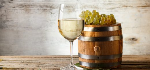 White wine still life with fresh grapevine