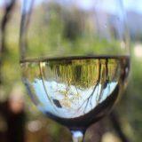 vin clair