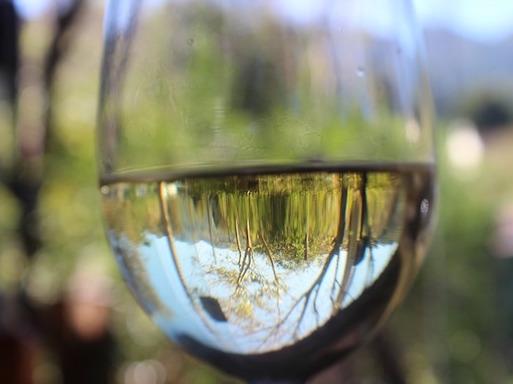 vin-clair